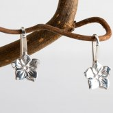 Mosami Forget Me Not 'Friendship' Drop Earrings