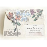Braintree Ladies Bamboo Briefs Gift Box