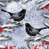 RSPB Festive Blackbirds Christmas Cards - Pack of 10