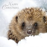 RSPB Woodland Friends Christmas Cards - Pack of 10