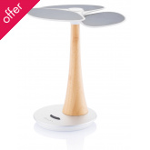 Ginkgo Solar Tree Charger - 4.000mAh
