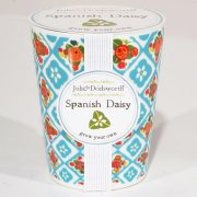 Julie Dodsworth 'Grow Your Own' Ceramic Planter - Spanish Daisy