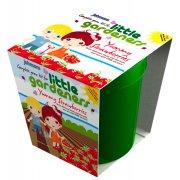 Johnson's Little Gardener's Grow Pot - Yummy Strawberries