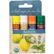 Badger Balm Lip Balm Sticks - Blue Pack of 4