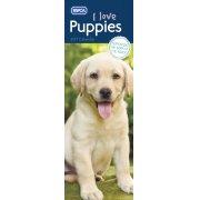 RSPCA Puppies Slim Calendar 2017