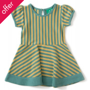 Forever Garden Green Striped Skater Dress