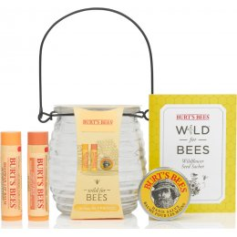 Burts Bees Wild for Bees Honeypot Gift Set