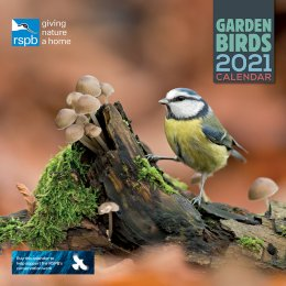 RSPB British Garden Birds 2021 Wall Calendar