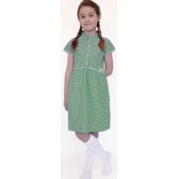 Organic Cotton Green Gingham Dress - 9yrs