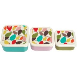 Vintage Ivy BPA Free Snack Boxes - Set of 3