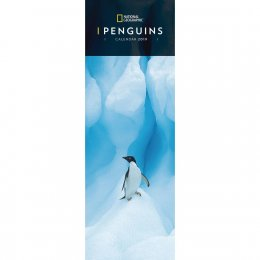 National Geographic Penguins 2019 Slim Calendar