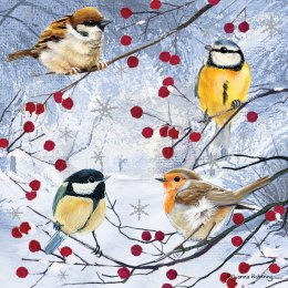 RSPB Christmas Gathering Christmas Cards