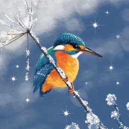 RSPB Sparkling Kingfisher Christmas Cards