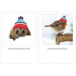 Help for Heroes Cosy Christmas Cards 10pk