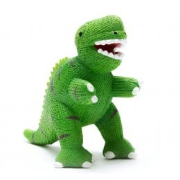 My First T-Rex - Natural Rubber Toy