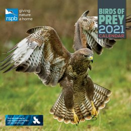 RSPB Birds of Prey 2021 Wall Calendar