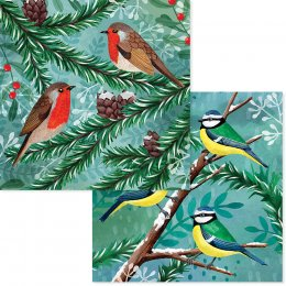 RSPB Winter Forest Birds Christmas Cards - Pack of 10