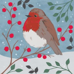 RSPB Snowy Perching Christmas Cards - Pack of 10