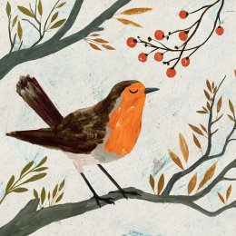 RSPB Christmas Robin Christmas Cards - Pack of 10