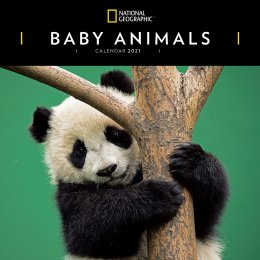 National Geographic Baby Animals Wall Calendar 2021